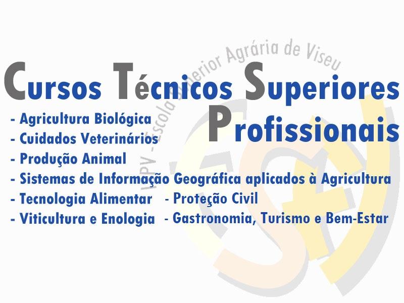 Cursos Técnicos Superiores Profissionais